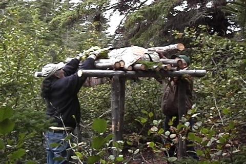 on met des billots de bois et de la mousse au dessus pour que tout gèle ensemble