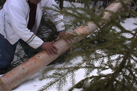 measure the wood with his hands