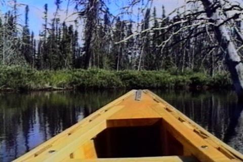 le devant du canot