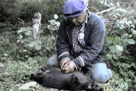 he removes the porcupine's intestines