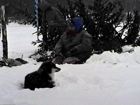 Une grand-mère, accompagnée de son chien, pêche sur la glace