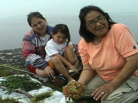 Une aînée d'Ekuanitshit enseigne à ses petits-enfants certaines de ses connaissances sur les plantes